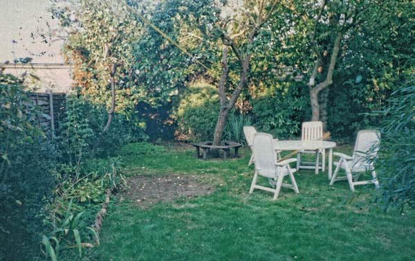 The-old-garden