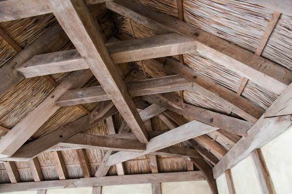 The-structural-timbers-of-the-shelter